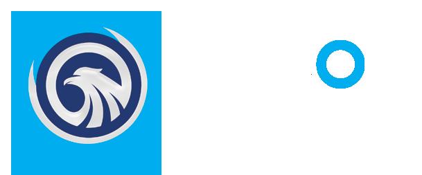EYE FALCON AMS